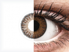 TopVue Color daily - Brown - sem correção (10lentes)