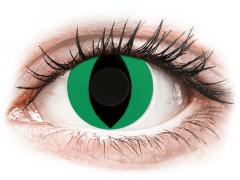 CRAZY LENS - Cat Eye Green - Diárias sem correção (2 lentes)